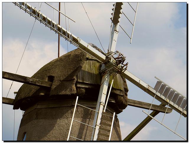 Blanck's Mühle | Windmühle Kampen