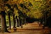 Herbstzauber - Enchanting autumn