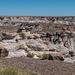 The painted desert.29jpg