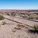 The painted desert1