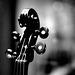 Florence Galleria dell Accademia 9 Stradivarius  XPro1 mono