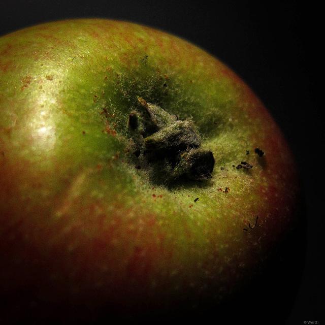 An apple a night....