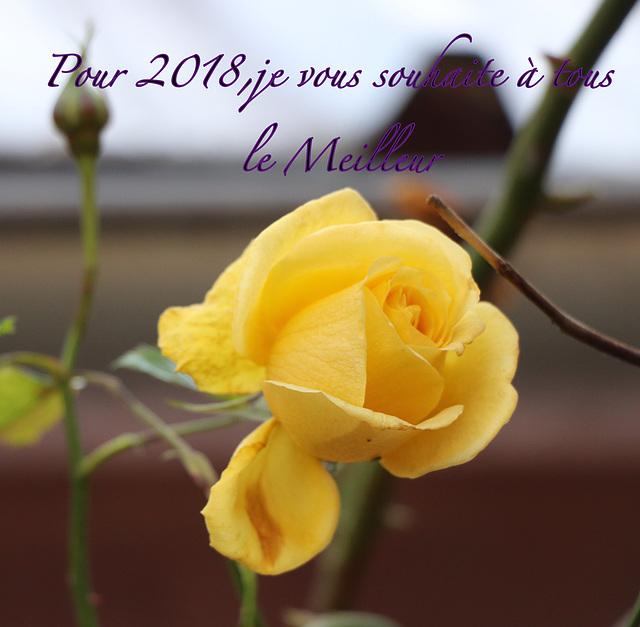 Bonne année 2018 pour vous tous