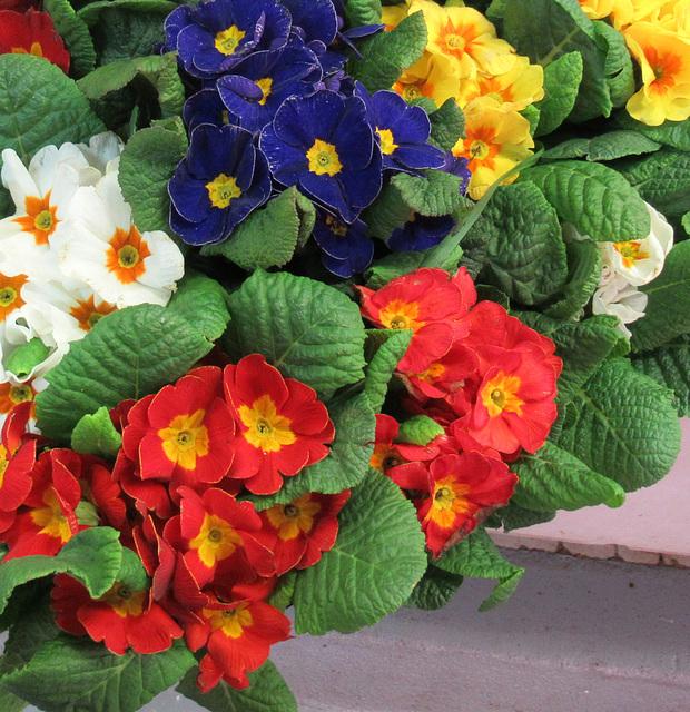 A like floral ARRANGEMENT