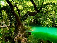Kursunlu lake : grandi e rigogliose piante circondano i laghetti