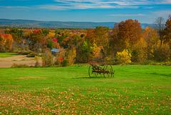 Whately farm vista