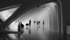Milwaukee : the art museum