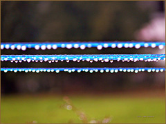 ...raindrops...