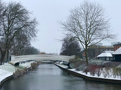 Beast from the East hits Stafford