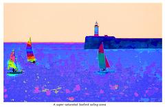 A super-saturated Seaford sailing scene - 6.6.2018