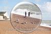 Gulls ignore female photogs - Seaford - 29.8.2014