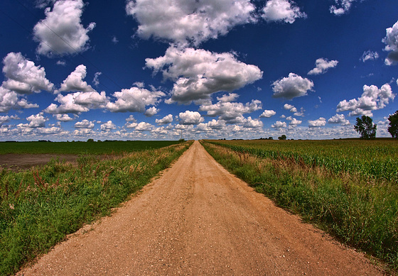 Down a Narrow Country Road