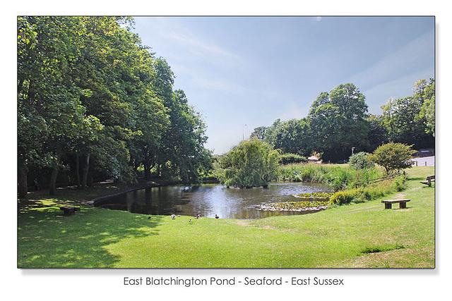 East Blatchington pond wide view - 18.6.2015