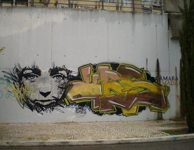Skran's painting on wall close to the tramway rails.