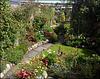 Cornish Garden. HFF!!! PLEASE STAY, DON'T RUN AWAY (ESPECIALLY NOW)!!!