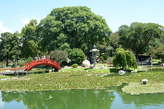 In the Japanese Garden of Buenos Aires