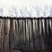 Eiszapfen an einer alten Scheune