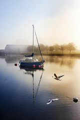 River Leven on a Misty Hogmanay