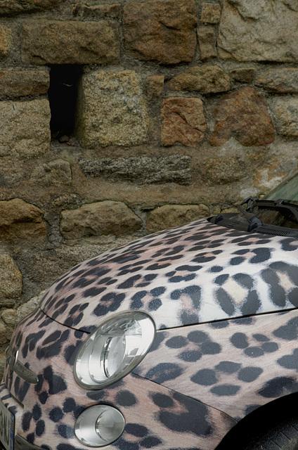 Fiat Panthera