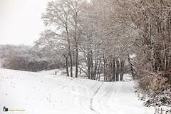 Immer mehr Schnee ...