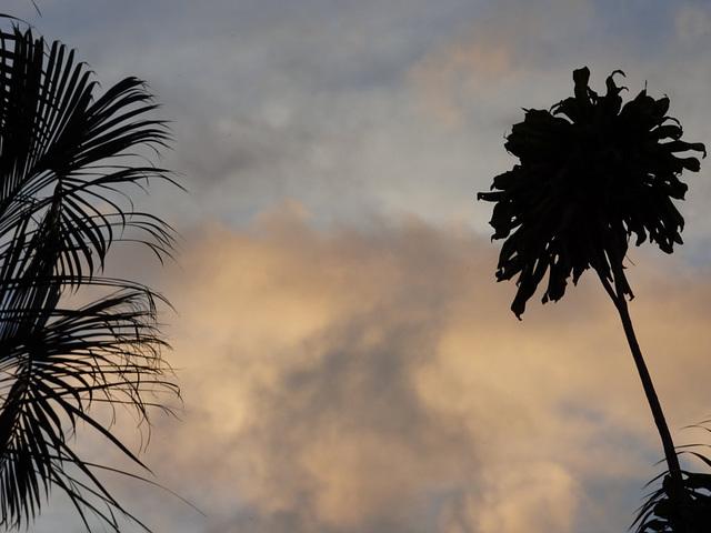 Cielo de san José de Costa Rica