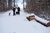 Winterfreuden - Winter delights