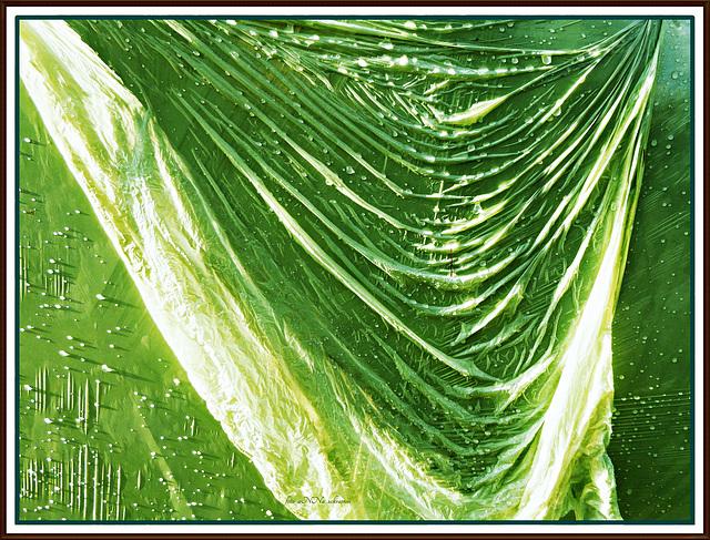 green-in-green - raindrops