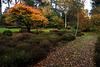Le souvenir d'une promenade tranquillou en automne
