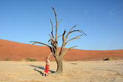 Namibia, Scene in Deadvlei at a Dry up Tree