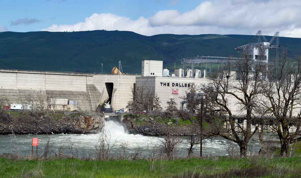 The Dalles Dam (#0320)
