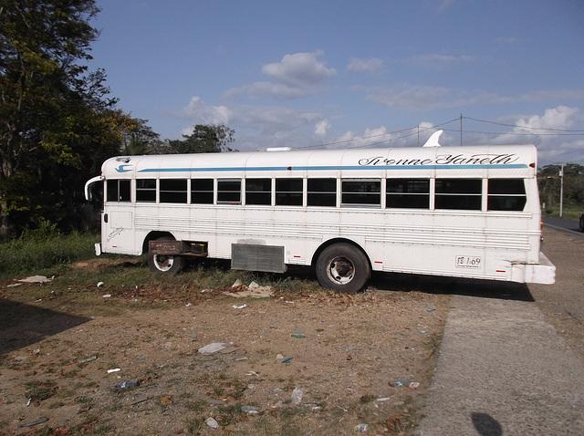 Bus Yvonne Yaneth