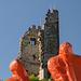 Burg Drachenfels DSC00336