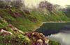Ein Häuschen mit Seeblick - A cottage with lake view - HFF