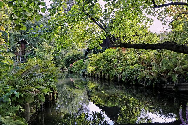 Spreewald in der Nähe von Berlin