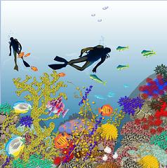 Arrecife I