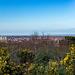 Bidston hill view