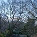 Bidston landscape