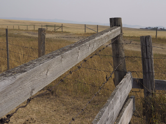 Ranch Fences in Southern Alberta