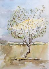 Aquarelle : L'arbre et un petit nuage jaune
