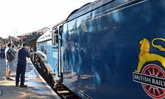 60007 Sir Nigel Gresley Arriving at Pickering