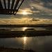 Burton wetlands5