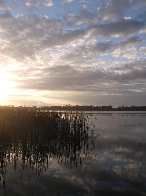 Lake Cecil's awakening / Le réveil du Lac Cécile