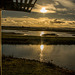 Burton wetlands7