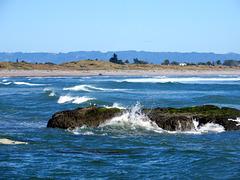 Whakatane Coast.