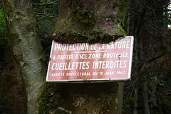 La nature reprend ses droits...