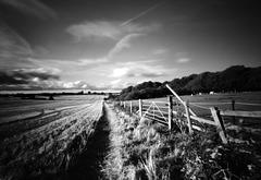 Hertfordshire gate