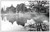 Scotney Castle Early Morning Mono