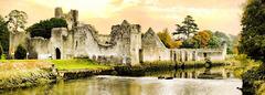 Adare - Desmond Castle