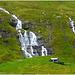 Isole Faroe - Go go waterfalls - (650)