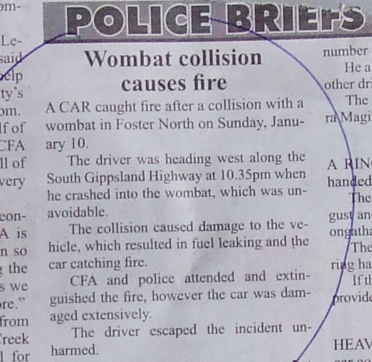 """""""wombat collision causes fire"""""""